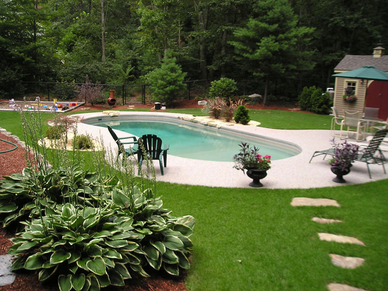 Clearwater Pools Kidney Shaped Pools Inground Pool
